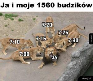 Milion budzików