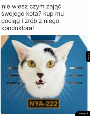 Koteł konduktor