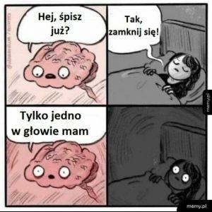 Tak działa mózg