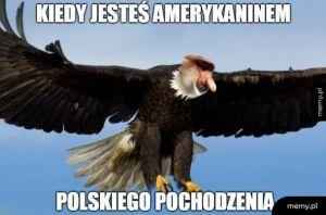 Polskie pochodzenie