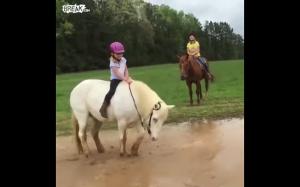 Kiedy koń zobaczy błoto