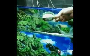 Podwodny wodospad