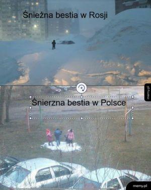 Śnieżna bestia