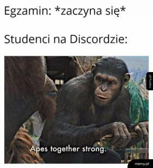 Zdalne egzaminy