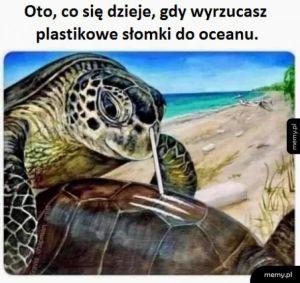 Mem ekologiczny