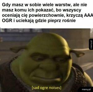 Moje życie to Shrek, tylko bez osła i fabuły
