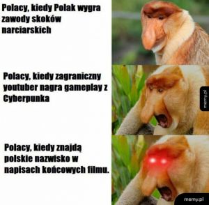 Polacy w mediach
