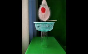 Water flower effect