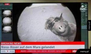 Tymczasem na Marsie