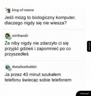Lag mózgu
