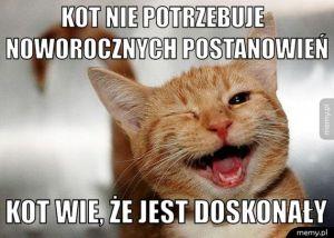 Kot to życie