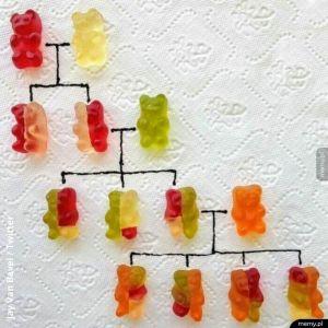 Genetyka wyjaśniona