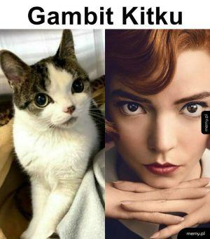 Gambit Kitku