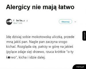 Z życia alergika