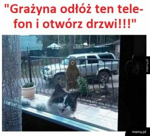 Grażyna, help!