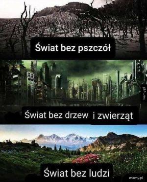 Świat bez ludzi