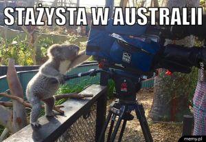 Stażysta w Australii.