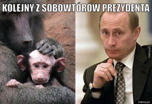 Sobowtórów prezydenta.