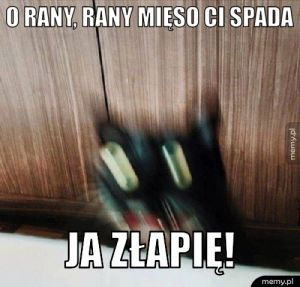 O rany, rany