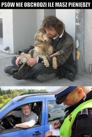 Wierny, pomocny przyjaciel