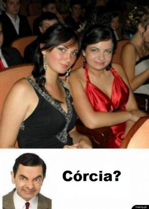 Córcia