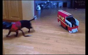 Kiedy gotuje