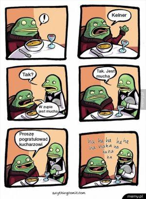 Mucha w zupie