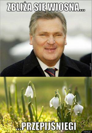 Zbliża się wiosna...