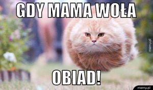 Gdy mama woła.