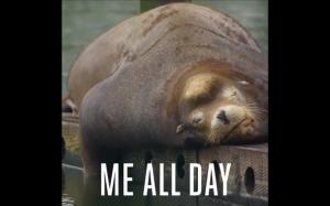 Mój każdy dzień