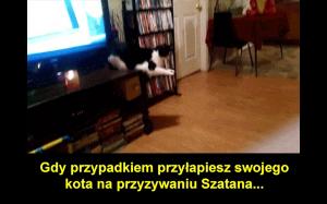 Koteł satanista