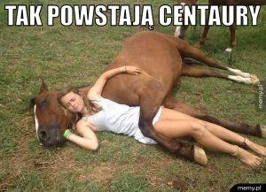 Tak powstają centaury.