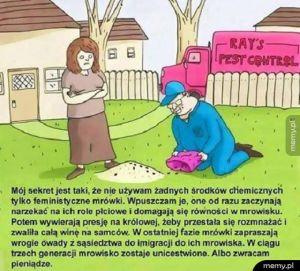 Feministyczne mrówki