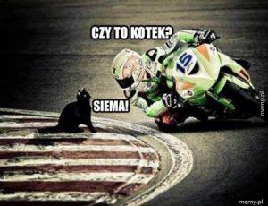 Siema!
