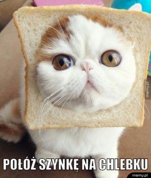 Połóż szynkę na chlebku.