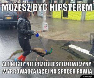 Wyższy poziom hipsterstwa