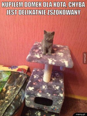 Domek dla kota.