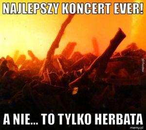 Najlepszy koncert ever!