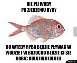 Ryba w wodzie