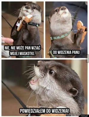 Skąpa wydra