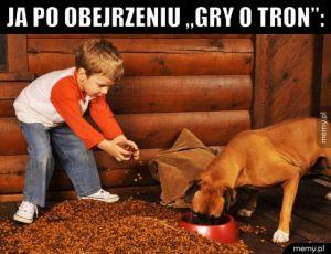 Pamiętaj o karmieniu psów