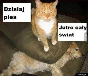 Koteł władca wszechświatów