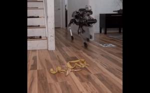 Terminator hyc o podłogę