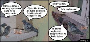 Parapetówka
