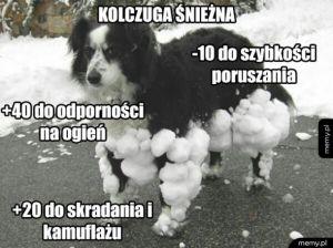 -100 do zadowolenia psa