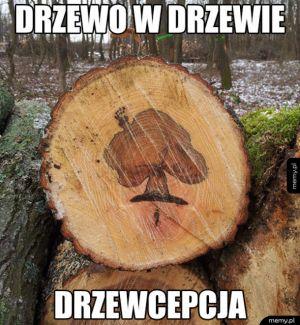 Drzewo w drzewie