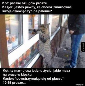 Kot co palił fajki