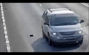 Uratował kotełka