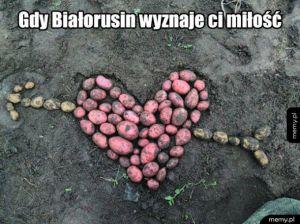 Kartoflana miłość
