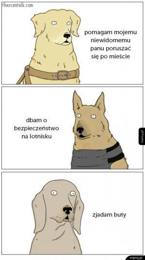 Rodzaje psów